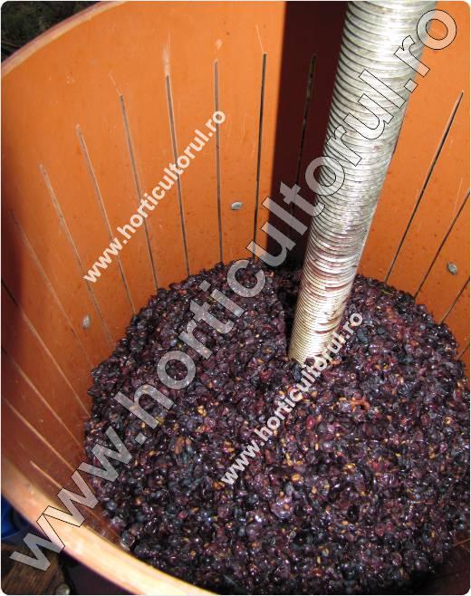 Fig. Adaugarea bostinei in presa 'teasc'