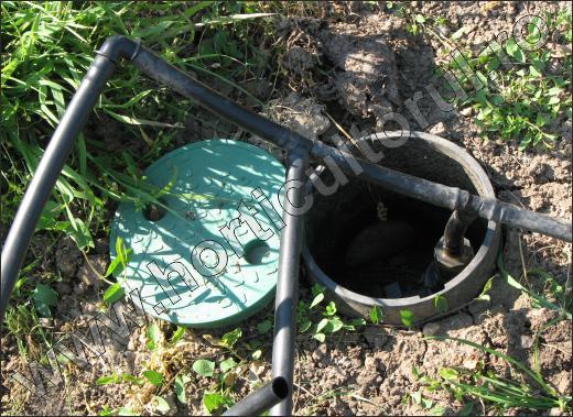 Irigarea legumelor prin picurare_camin de alimentare cu apa