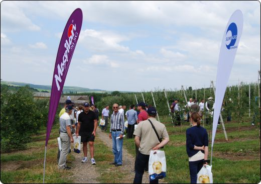 Tehnologii japoneze moderne in pomicultura bucovineana