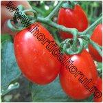 Tomate-Japoneze-Sungrape