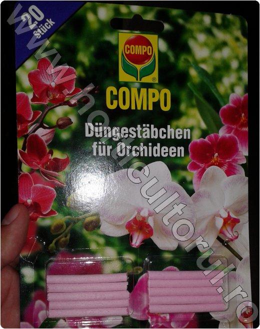 Orhidee Phalaenopsis_ferti