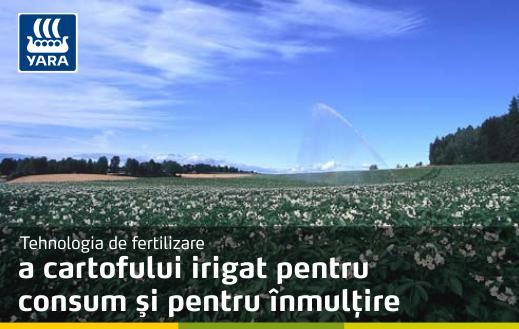 Fertilizarea Cartofului_poza