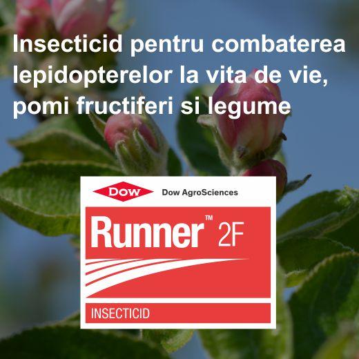 Runner_2