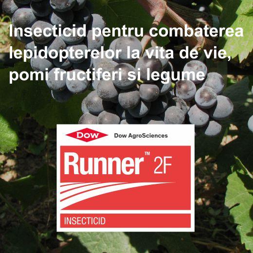 Runner_3