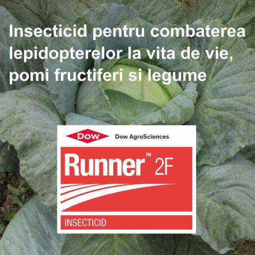 Runner_4
