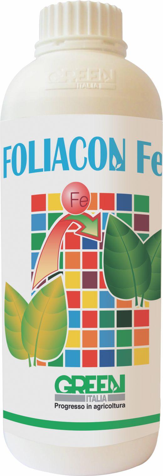 Carența fierului din plantele -cloroza ferica-foliacon Fe