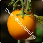 Tomatele - Rosiile Galbene-150