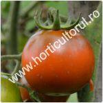Tomatele-rosiile negre-soiuri_1