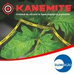 kanemite_150