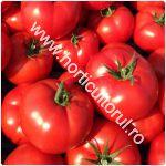 Tomatele Gravitet F1_150